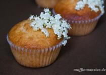 Holunderblüten Muffin mit Macadamia